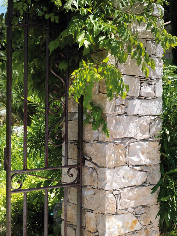 Barrettes calcaire de l'Yonne